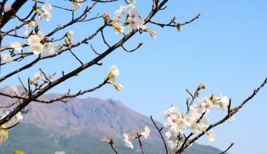3月講座紹介 (3/6, 3/20)